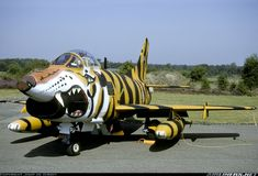 Aircraft Photo of Fiat C/N Special paint scheme for the 1991 Tiger Meet. How to turn a lovely aircraft into a mean machine. Nose Art, Military Jets, Military Aircraft, Air Tiger, Airplane Decor, Machine Photo, Aircraft Painting, Aircraft Pictures, Aircraft Images