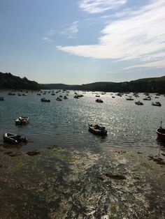Looking up the Salcombe Estuary towards Kingsbridge in Devon, on the most beautiful June day.