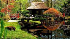 So Beautiful  Japanese Garden