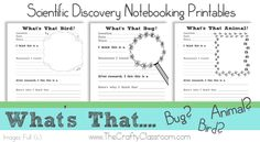 Free Scientific Discovery Notebooking Printables #homeschool