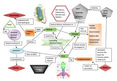 Useful infectious diseases concept map!