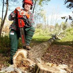 How to Cut Down a Tree The Family Handyman expert, Bob Tacke, will show you the proper way to cut down a tree with a chainsaw. After watching this video, you will be able to make any tree fall where you want it to.