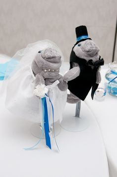manatee bride and groom :-) shall have this at my wedding!