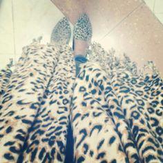 Leopard VS Leopard