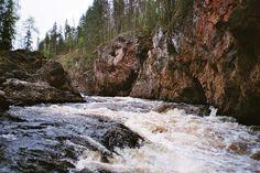 Kiutaköngäs, Oulangan kansallispuisto