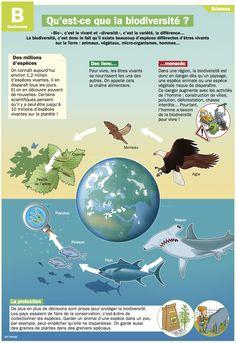 Fiche exposés : Qu'est-ce que la biodiversité ?