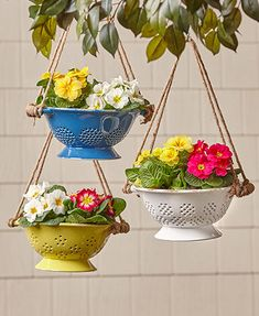 Ceramic Colander Hanging Planters - The Ceramic Colander Hanging Planter has antique appeal that enhances your home's country charm. Diy Garden, Garden Crafts, Garden Projects, Garden Art, Diy Planters, Garden Planters, Hanging Planters, Succulent Planters, Succulents Garden