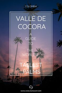 Valle de Cocora is home to the world´s tallest wax palms and one of the most beautiful landscapes in Colombia. Find out our secret to hiking Valle de Cocora! Palms, Beautiful Landscapes, Most Beautiful, Wax, Hiking, World, Colombia, Palmas, The World