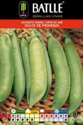 Huerto familiar – Cultivo de guisantes « Felix Maocho
