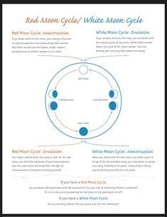 full moon bath ritual Full moon and new moon period Sacred Feminine, Feminine Energy, Divine Feminine, New Moon Rituals, Full Moon Ritual, Red Moon Cycle, Period Cycle, Moon Time, Vie Motivation