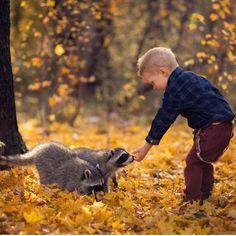 #Animali: #Foto Woodland Friends | Photograph by Lisa Holloway (@desert_rose76  #WildlifePlanet da  (link: http://ift.tt/21VIn2U )