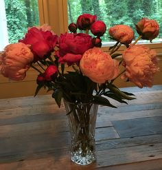 Peonies from Kroger in Buckhead on 6/19/16