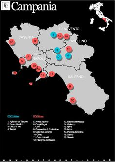 Campania Wine Map DOC DOCG 1) Aglianico del Taburno DOCG 2) Fiano di Avellino DOCG 3) Greco di Tufo DOCG 4) Taurasi DOCG 5) Aversa DOC 6) Campi Flegrei DOC 7) Capri DOC 8) Casavecchia di Pontelatone DOC 9) Castel San Lorenzo DOC (for Moscato wines the use of the term Lambiccato is permitted) 10) Cilento DOC 11) Costa d'Amalfi DOC (optional references to the subzones of (Furore, Ravello or Tramonti) 12) Falanghina del Sannio DOC (optional references to the subzones of Guardia Sanframondi…