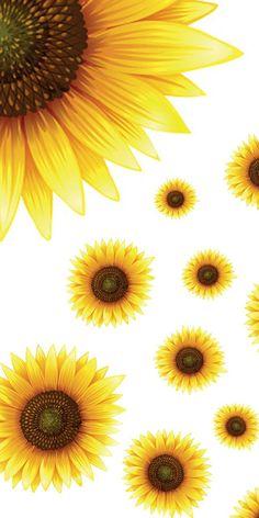 Parede de fundo, tela de fundo, fundo celular, planos de fundo, p Flowery Wallpaper, Sunflower Wallpaper, Wallpaper Iphone Cute, I Wallpaper, Cute Wallpapers, Wallpaper Backgrounds, Iphone Wallpapers, Flowers Nature, Beautiful Flowers