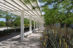 Gallery - Sunnylands Center and Gardens / The Office of James Burnett + Frederick Fisher & Partners, Architects - 20