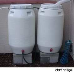 Dig dig digging on pinterest full sun plants rain for How to make your own rain barrel system
