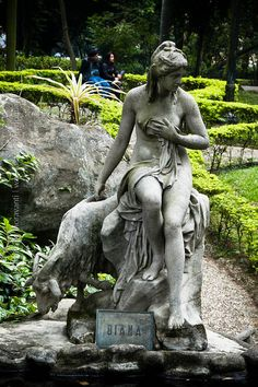 jardim da luz sao paulo brasil is a open museum in form of a big garden