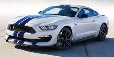 Ford Mustang Shelby GT350 – More pictures !
