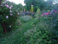 Zahrada plná kouzel
