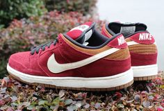 Nike SB Dunk Low Pro | Team Red, Ale Brown & Gum