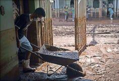 Aufräumen: Nach dem Bruch eines Klärbeckens mit giftigen Überresten der Bergwerksindustrie sind im Südosten Brasiliens mindestens 17 Menschen durch eine giftige Schlammlawine getötet worden, rund 40 weitere wurden noch vermisst. Die Schlammlawine ergoss sich am Donnerstag über zwei Kilometer ins Tal und begrub ein nahegelegenes Bergarbeiterdorf unter sich. Mehr Bilder des Tages auf: http://www.nachrichten.at/nachrichten/bilder_des_tages/ (Bild: epa)