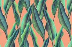 Tropical pattern. Jungle palm leaves by mystel on Creative Market