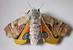 Image result for insect embroidery
