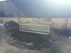 Pretty aquaponics setup, in process