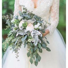 ideas flowers wedding winter dusty miller for 2019 Eucalyptus Bouquet, Eucalyptus Wedding, Seeded Eucalyptus, Dusty Miller, Blue Bouquet, Flower Bouquet Wedding, Orchid Bouquet, Hand Tied Bouquet, Dusty Rose Wedding