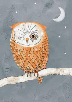 Owl illustration from bellablackbird