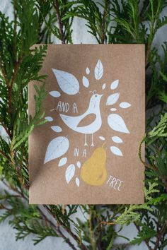 And a Partridge in a Pear Tree  - Blank Christmas Card