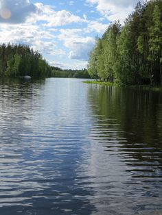 Finnish summer time Sounds Of Birds, Norwegian Wood, Wonderful Time, Lakes, Finland, Wilderness, Summer Time, Countryside, Norway