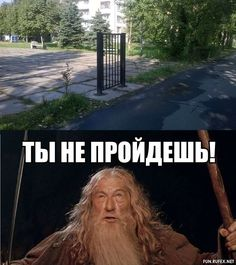 Russian Humor, Mood Pics, Stupid Funny Memes, Funny Stuff, Good Mood, Best Memes, The Hobbit, Sarcasm, Haha