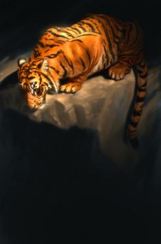 tiger-5-aaron-blaise.jpg (595×900)