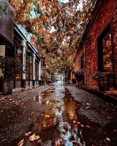 What if winter is not a place outside? Autumn Cozy, Autumn Rain, Autumn Scenery, Autumn Aesthetic, Fall Wallpaper, Fall Pictures, January Pictures, Fall Photos, All Nature