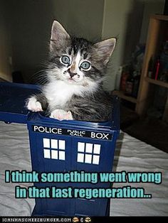 The next dr.who or dr.mew