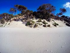 by http://ift.tt/1OJSkeg - Sardegna turismo by italylandscape.com #traveloffers #holiday | Non siamo in montagna e neve non è... Alghero - Spiaggia di Maria Pia La Baia Dei Venti . #gopro #goprohero #goprohero4 #goprooftheday #gopackgo #goprouniverse #goproeverything #goprolife #goprophotography_ #labaiadeiventi #baiadeiventi #lanuovasardegna #beach #spiaggia #mare #sabbia #bianco #sea #wind #dune #alghero #sardegna Foto presente anche su http://ift.tt/1tOf9XD | February 04 2016 at 12:27PM…