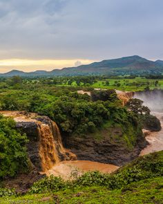 The Blue Nile Falls in Ethiopia are one of the most beautiful places in the country, with lush green scenery and the thundering water of the falls themselves. The falls are part of the beginning of the Nile River.