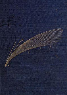 Blazing comet. Astronomical curiosities. 1909. Cover art.