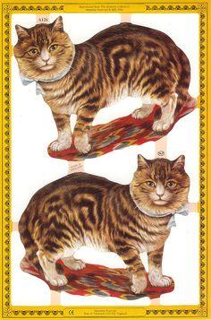 Victorian cat scraps from England cat scrap fever. Printable Animals, Cat Cards, Vintage Postcards, Cats And Kittens, Retro, Dog Cat, Cat Prints, Paper Scraps, Fencing