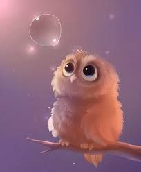 Image result for cute owls wallpaper