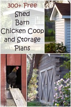 300+ Shed, Barn, Chicken Coop and Storage Plans - This is the mother load of free plans for sheds, barns, chicken coops, storage and pretty much any other plan you can think of! Spring is here so that means you need a great looking DIY greenhouse or fence plan to keep you busy. Whether you're just dreaming it or you're ready to build it, the backyard workshop is the ultimate for every woodworker.
