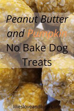 No Bake Dog Treats, Frozen Dog Treats, Puppy Treats, Diy Dog Treats, Healthy Dog Treats, Healthy Pets, Dog Cake Recipes, Easy Dog Treat Recipes, Dog Biscuit Recipes