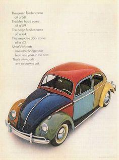 Multi Coloured Beetle. dd