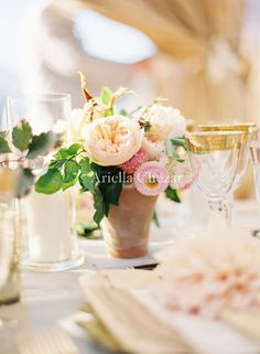 Terracotta, blush, pale pink - very pretty; nice with the touch of gold in the background.
