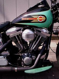 95 evo Harley Bobber, Harley Davidson Chopper, Harley Davidson Motorcycles, Softail Bobber, Motorcycle Paint Jobs, Motorcycle Tank, Motor Scooters, Summer Barbecue, Custom Bikes