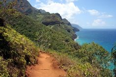Kalalau Trail, Kauai, Hawaii. -   Kauai's Na Pali coastline boasts sheer cliffs dropping into the blue Pacific waters below, lush tropical valleys with picture-perfect waterfalls, green, velvet coated mountains and waves crashing dramatically into the rocky cliffs mark this hike into the remote and protected areas of coastline, where you can also spot pods of dolphins, humpback whales and sea turtles off the coast.