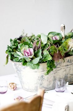 Centerpieces: distressed tins filled with ornamental kale & cabbage, very pretty colors...