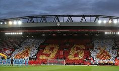 Liverpool fans back safe standing
