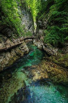 Vintgar Gorge in Bled, Slovenia.